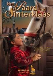Kůň pro Winky