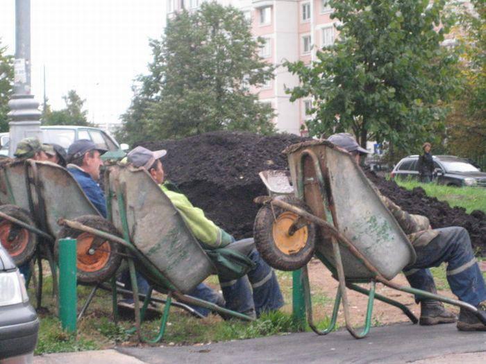 Pracanti v Brně