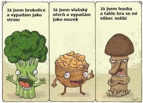 Baví se takhle brokolice, ořech a houba...
