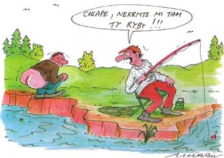 Krmení ryb