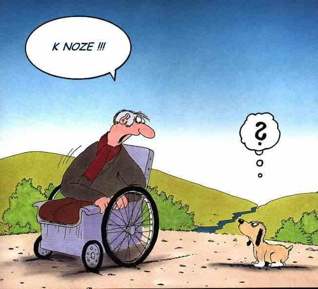 Vozíčkář a jeho zmatený pes