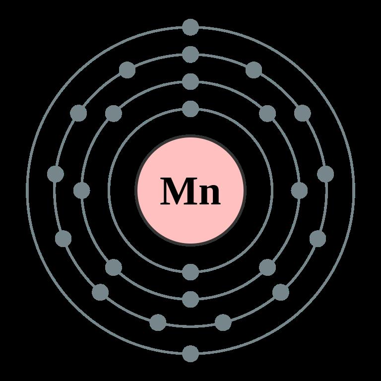 Mangan - pro řádný vývoj buněk a podporu vitamínu B1