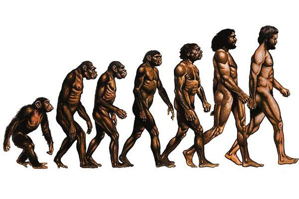 Nevyřešené otazníky evoluce, je to slepá ulička vědy?
