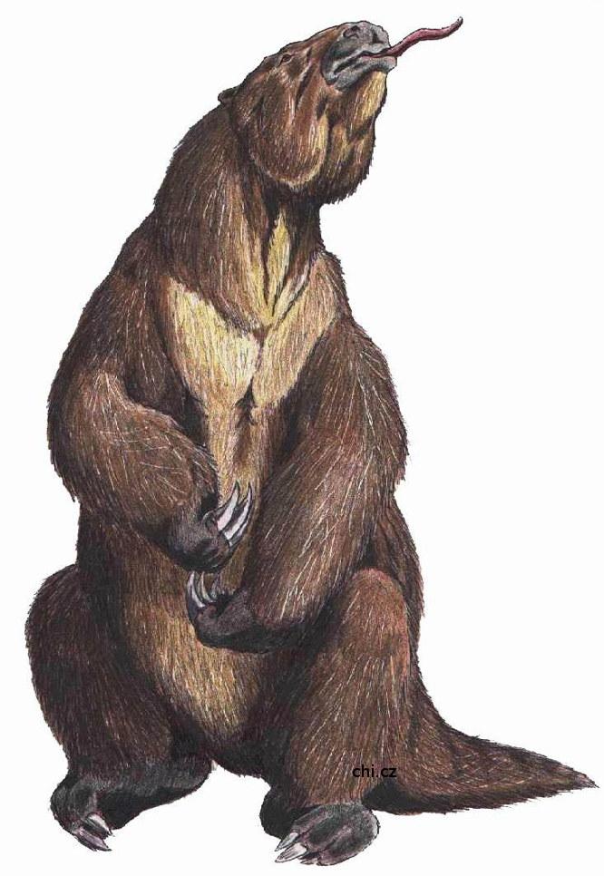 Megatherium - medvěd větší než slon